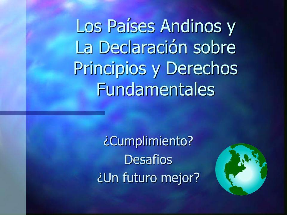 Los Países Andinos y La Declaración sobre Principios y Derechos Fundamentales ¿Cumplimiento?Desafios ¿Un futuro mejor?
