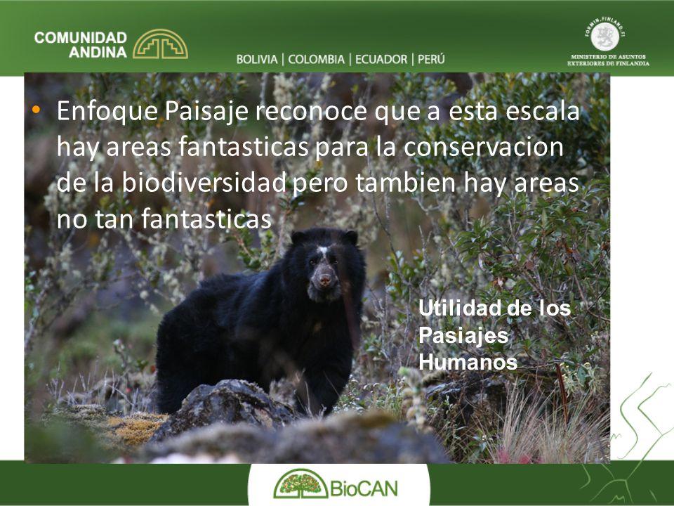 Enfoque Paisaje reconoce que a esta escala hay areas fantasticas para la conservacion de la biodiversidad pero tambien hay areas no tan fantasticas Ut