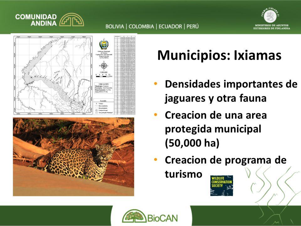 Municipios: Ixiamas Densidades importantes de jaguares y otra fauna Creacion de una area protegida municipal (50,000 ha) Creacion de programa de turismo