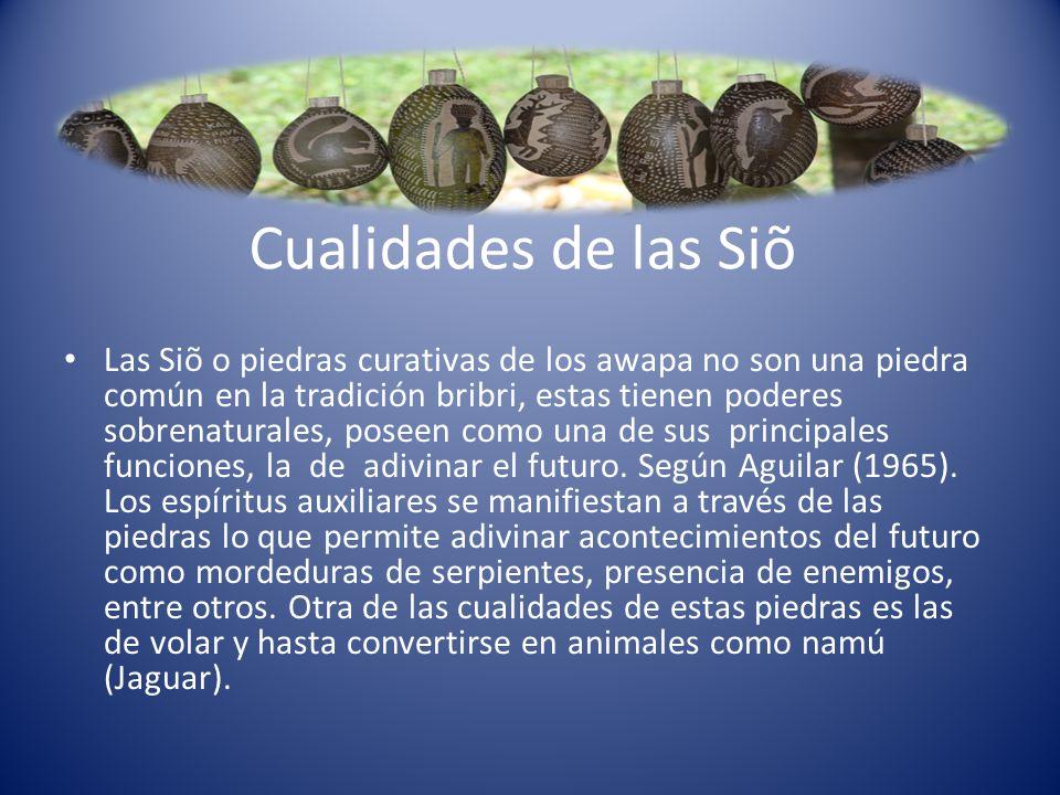 Cualidades de las Siõ Las Siõ o piedras curativas de los awapa no son una piedra común en la tradición bribri, estas tienen poderes sobrenaturales, po