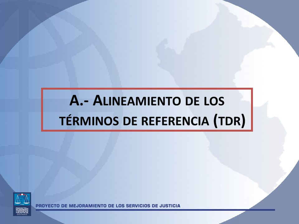 A.- A LINEAMIENTO DE LOS TÉRMINOS DE REFERENCIA ( TDR )