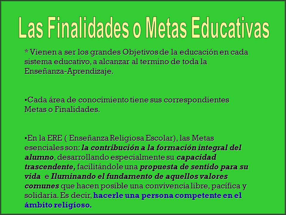 * Vienen a ser los grandes Objetivos de la educación en cada sistema educativo, a alcanzar al termino de toda la Enseñanza-Aprendizaje. Cada área de c