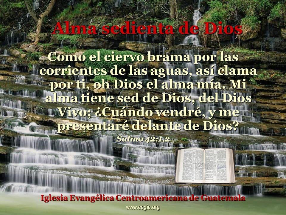 Alma sedienta de Dios Como el ciervo brama por las corrientes de las aguas, así clama por ti, oh Dios el alma mía.