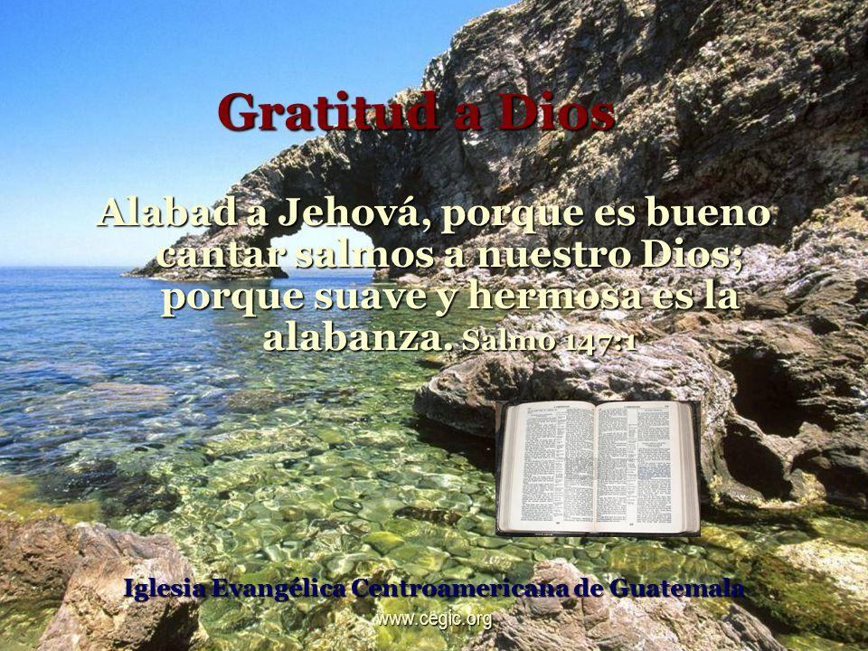 Gratitud a Dios Alabad a Jehová, porque es bueno cantar salmos a nuestro Dios; porque suave y hermosa es la alabanza.