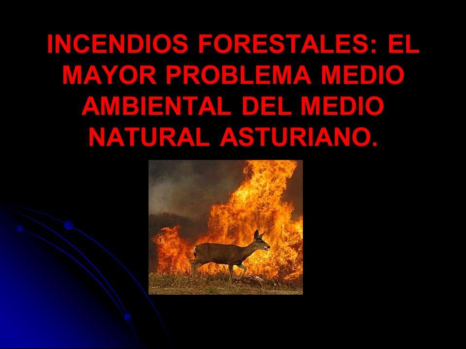 Causalidad de los incendios en Asturias.