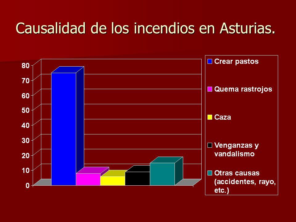 LECTURA DE LOS GRÁFICOS: Vamos perdiendo la batalla en el capítulo de prevención. Pues la tendencia en el número de incendios es claramente alcista Va
