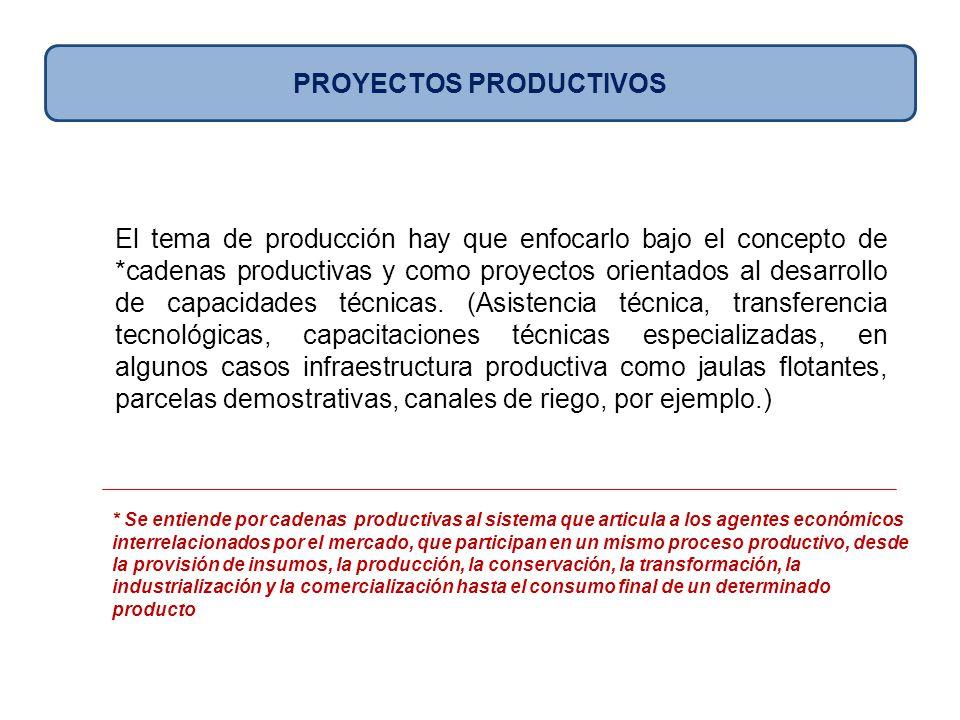 El tema de producción hay que enfocarlo bajo el concepto de *cadenas productivas y como proyectos orientados al desarrollo de capacidades técnicas. (A