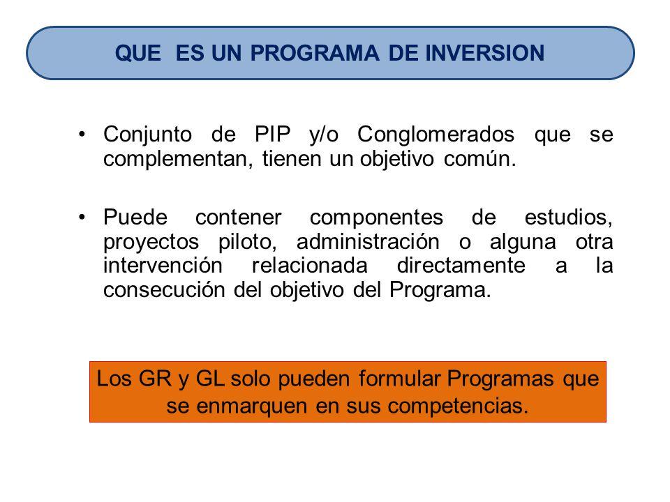 Conjunto de PIP y/o Conglomerados que se complementan, tienen un objetivo común. Puede contener componentes de estudios, proyectos piloto, administrac