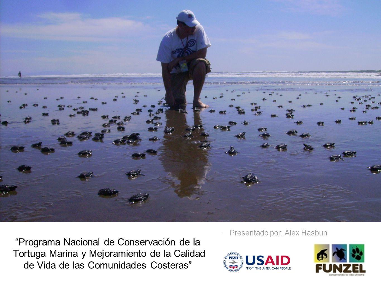Programa Nacional de Conservación de la Tortuga Marina y Mejoramiento de la Calidad de Vida de las Comunidades Costeras Presentado por: Alex Hasbun