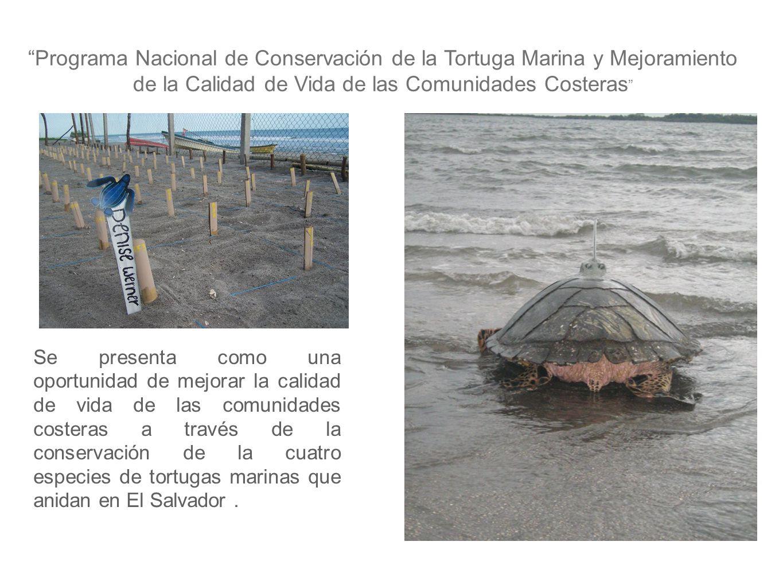 Objetivo General: Fortalecer a las comunidades costeras a través de la conservación de las cuatro especies de tortugas marinas.