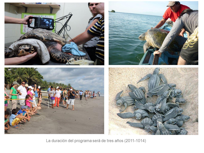 La duración del programa será de tres años (2011-1014)