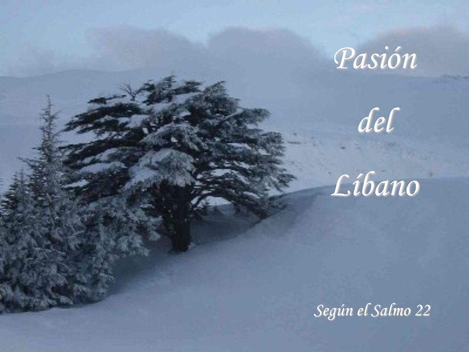 PasióndelLíbano Según el Salmo 22