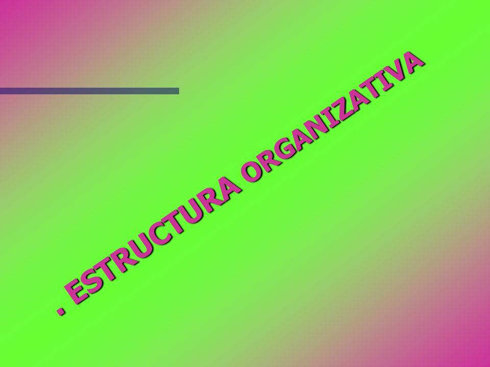 . ESTRUCTURA ORGANIZATIVA