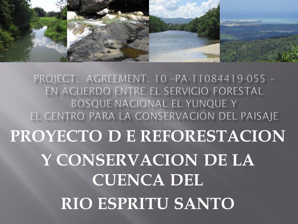 PROYECTO D E REFORESTACION Y CONSERVACION DE LA CUENCA DEL RIO ESPRITU SANTO