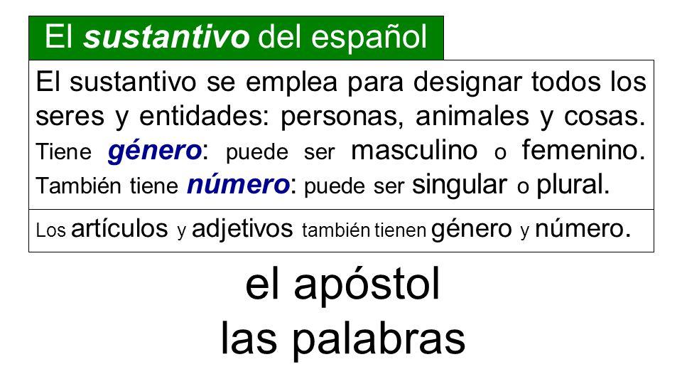 El sustantivo del español El sustantivo se emplea para designar todos los seres y entidades: personas, animales y cosas. Tiene género: puede ser mascu