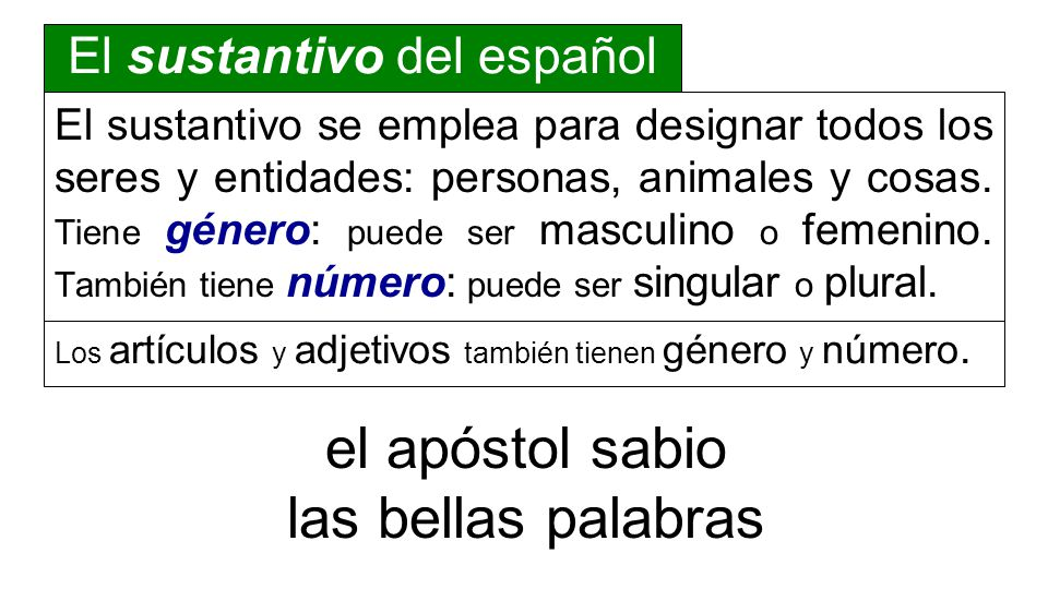 o` a;nqrwpoj dida,skei to.n no,mon toi/j avdelfoi/j El hombre enseña la ley nominativoverboacusativodativo