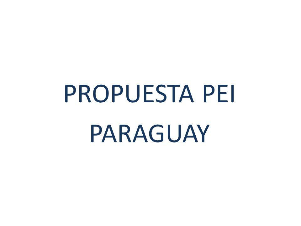 PROPUESTA PEI PARAGUAY