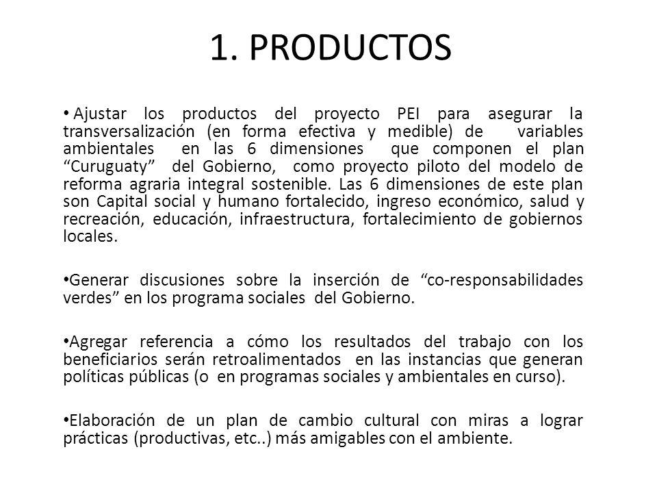 1. PRODUCTOS Ajustar los productos del proyecto PEI para asegurar la transversalización (en forma efectiva y medible) de variables ambientales en las