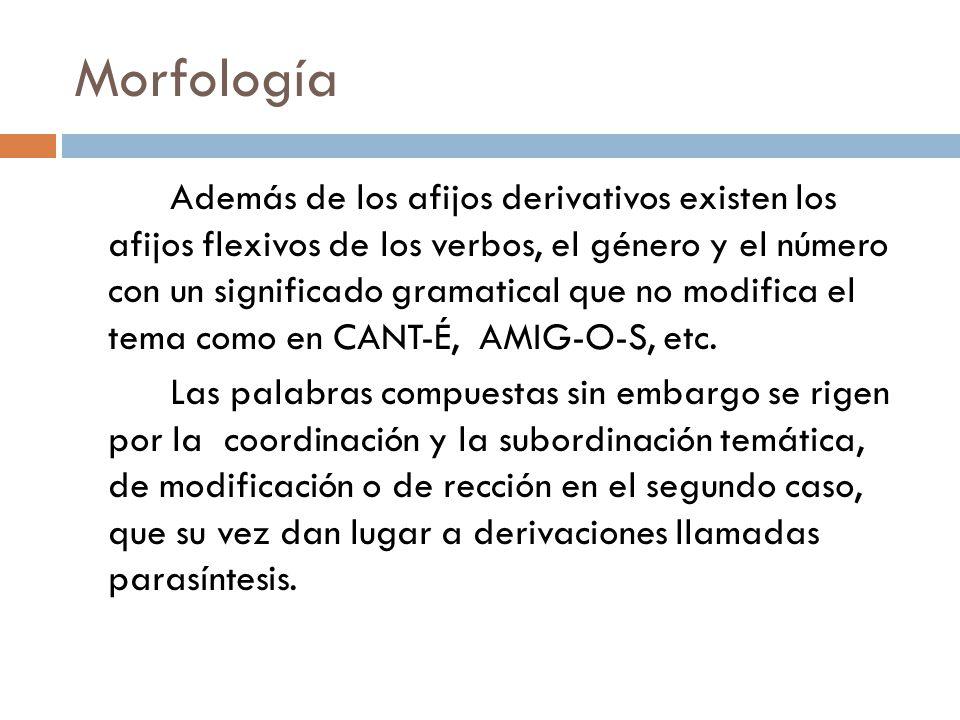 Morfología Además de los afijos derivativos existen los afijos flexivos de los verbos, el género y el número con un significado gramatical que no modifica el tema como en CANT-É, AMIG-O-S, etc.