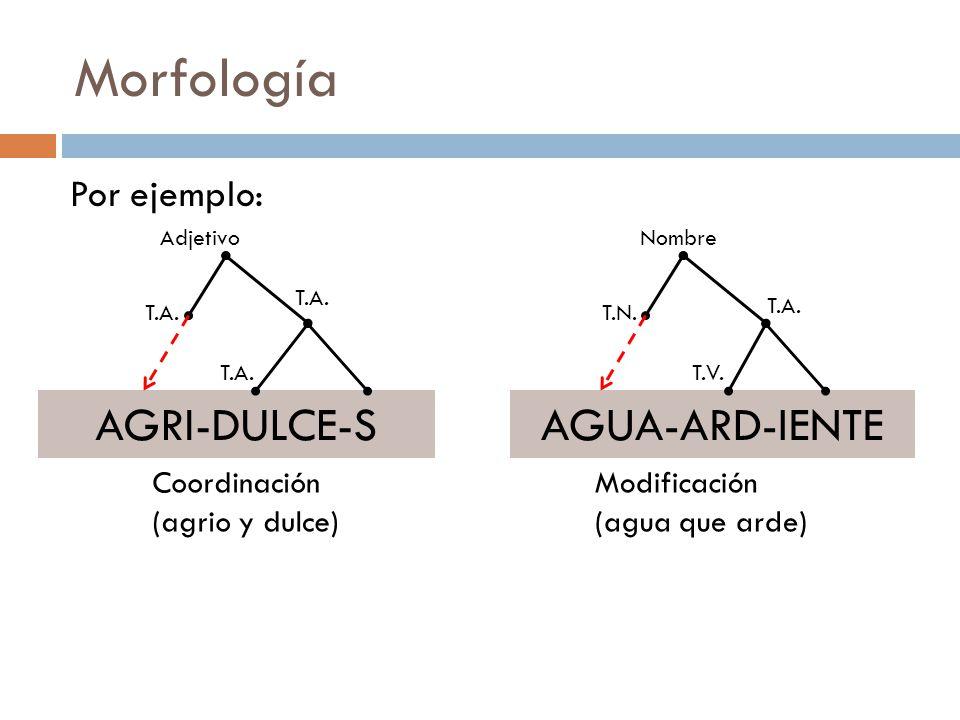 Morfología Por ejemplo: AGRI-DULCE-S Adjetivo Coordinación (agrio y dulce) T.A.