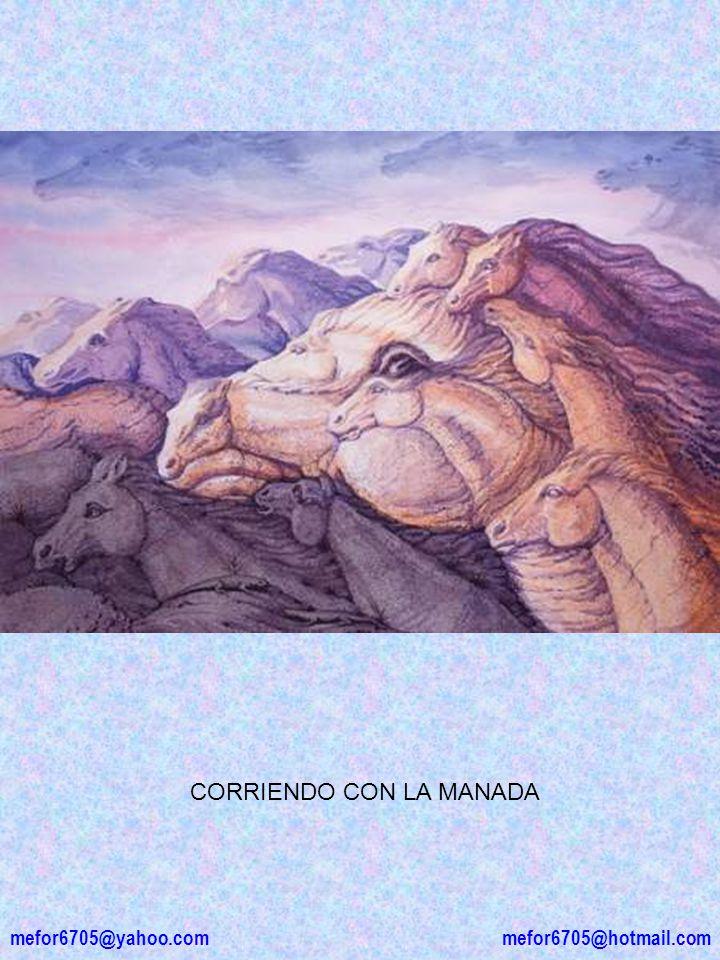 mefor6705@yahoo.com mefor6705@hotmail.com CORRIENDO CON LA MANADA