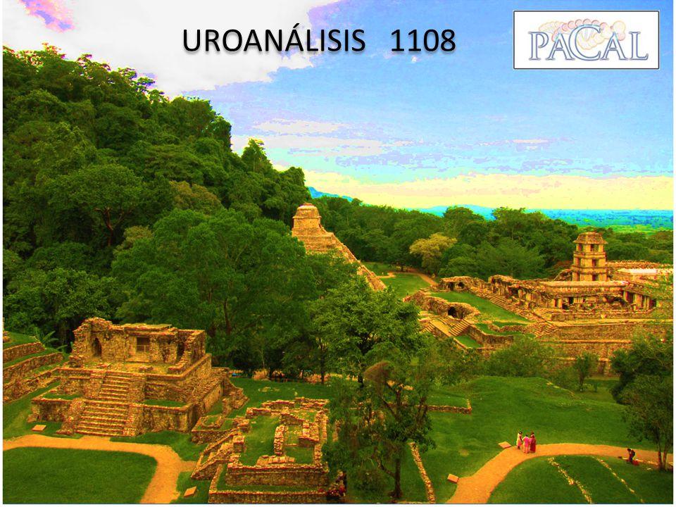 UROANÁLISIS 1108