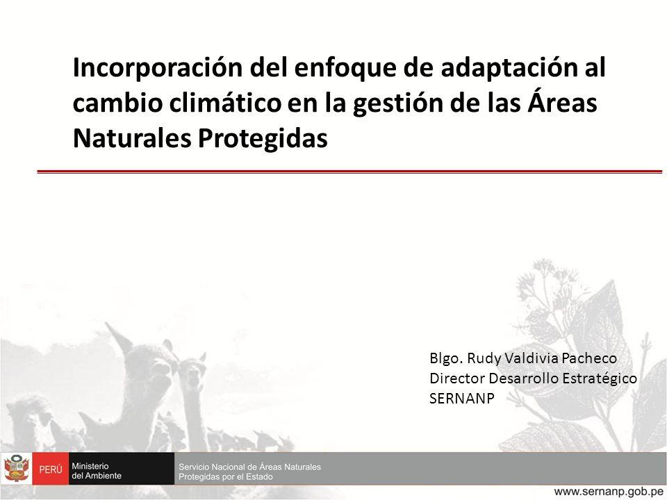 Incorporación del enfoque de adaptación al cambio climático en la gestión de las Áreas Naturales Protegidas Blgo. Rudy Valdivia Pacheco Director Desar