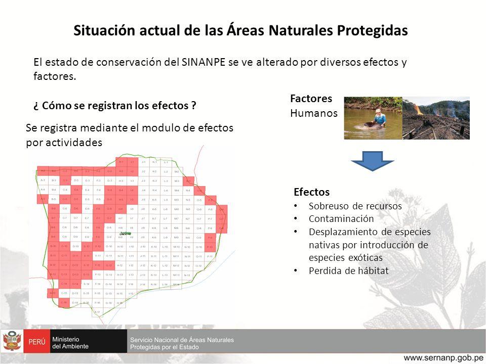 Situación actual de las Áreas Naturales Protegidas El estado de conservación del SINANPE se ve alterado por diversos efectos y factores. ¿ Cómo se reg
