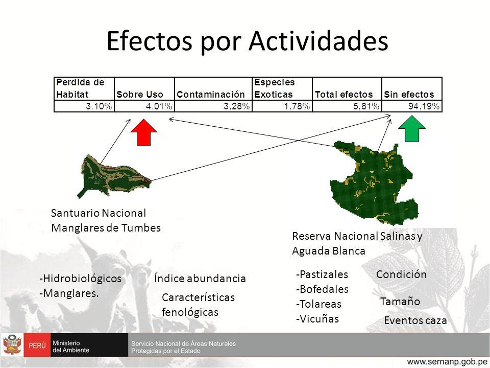 Efectos por Actividades -Hidrobiológicos -Manglares. -Pastizales -Bofedales -Tolareas -Vicuñas Santuario Nacional Manglares de Tumbes Reserva Nacional