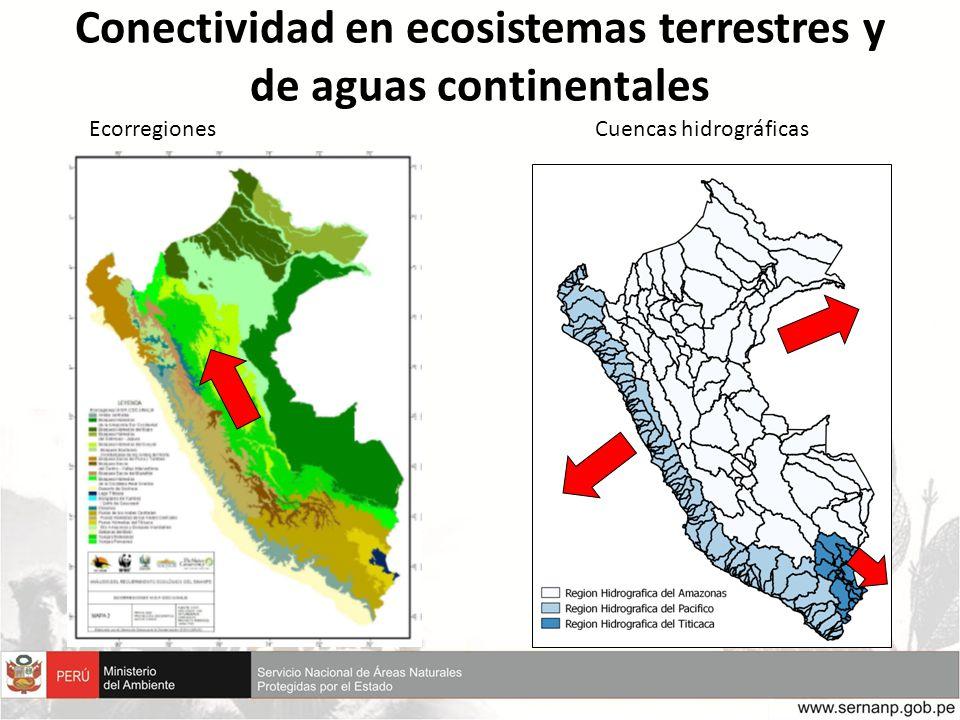 Conectividad en ecosistemas terrestres y de aguas continentales EcorregionesCuencas hidrográficas