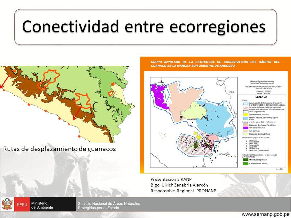 Conectividad entre ecorregiones Presentación SIRANP Blgo. Ulrich Zanabria Alarcón Responsable Regional -PRONANP Rutas de desplazamiento de guanacos