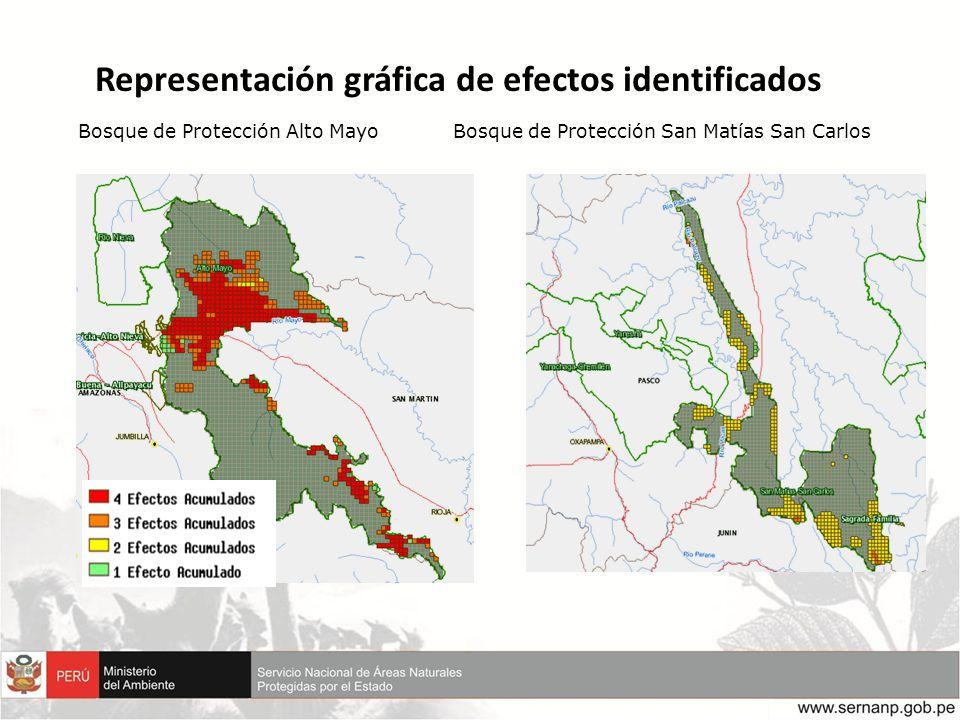 Representación gráfica de efectos identificados Bosque de Protección Alto MayoBosque de Protección San Matías San Carlos