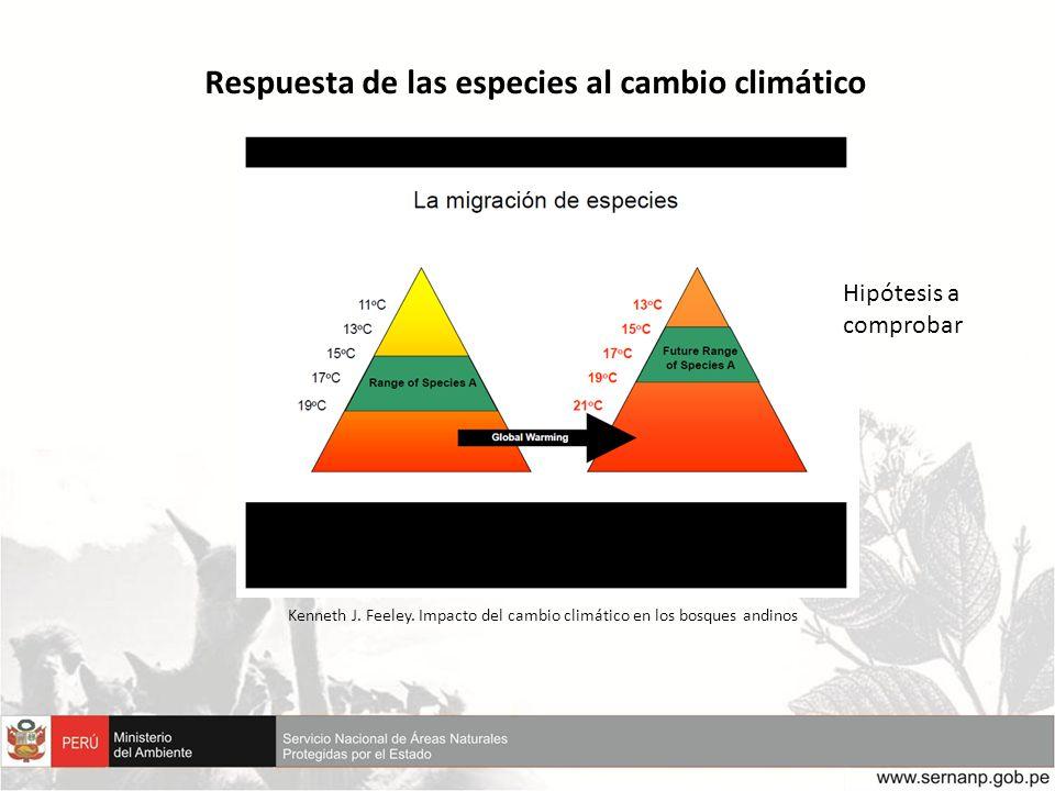 Respuesta de las especies al cambio climático Kenneth J. Feeley. Impacto del cambio climático en los bosques andinos Hipótesis a comprobar
