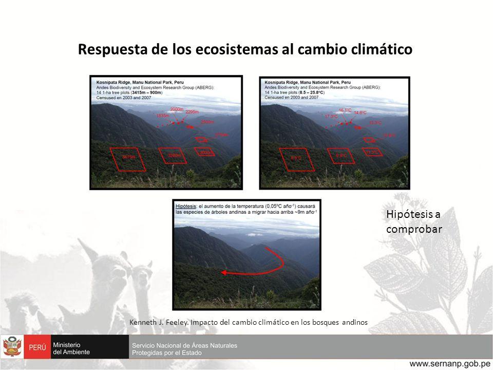 Kenneth J. Feeley. Impacto del cambio climático en los bosques andinos Respuesta de los ecosistemas al cambio climático Hipótesis a comprobar
