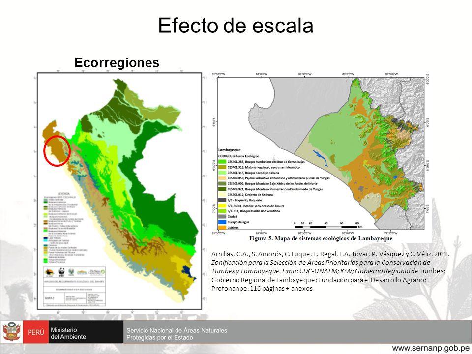 Efecto de escala Ecorregiones Arnillas, C.A., S. Amorós, C. Luque, F. Regal, L.A. Tovar, P. Vásquez y C. Véliz. 2011. Zonificación para la Selección d