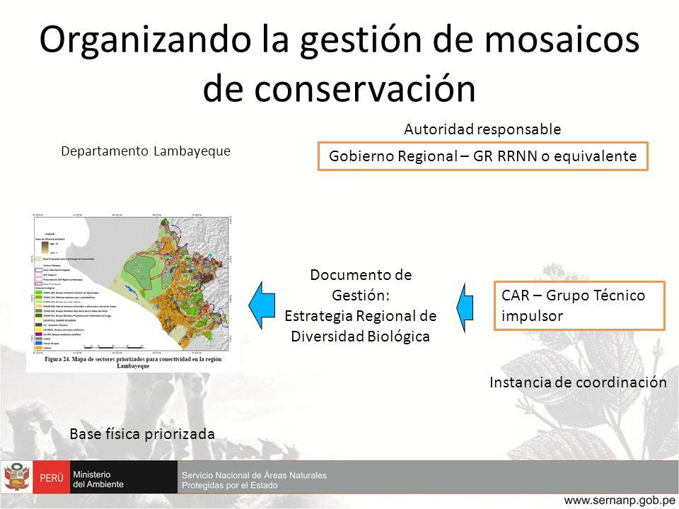 Gobierno Regional – GR RRNN o equivalente CAR – Grupo Técnico impulsor Documento de Gestión: Estrategia Regional de Diversidad Biológica Instancia de