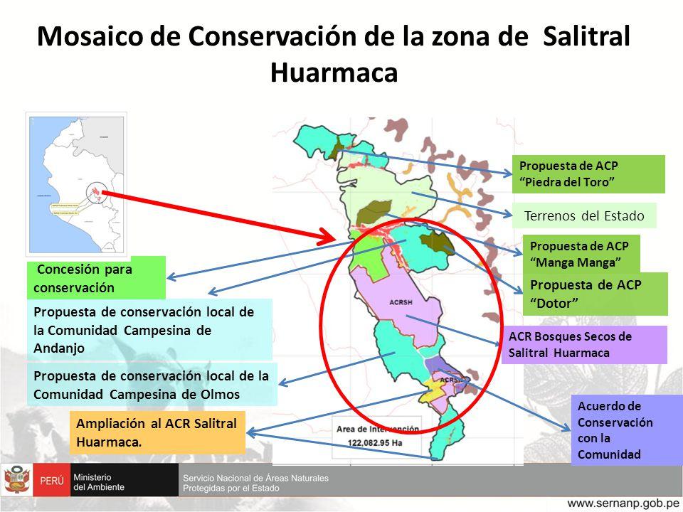 Mosaico de Conservación de la zona de Salitral Huarmaca Acuerdo de Conservación con la Comunidad Propuesta de ACP Piedra del Toro Propuesta de ACP Man