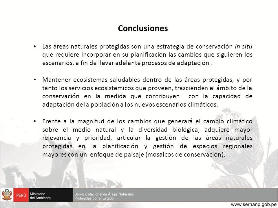 Conclusiones Las áreas naturales protegidas son una estrategia de conservación in situ que requiere incorporar en su planificación las cambios que sig