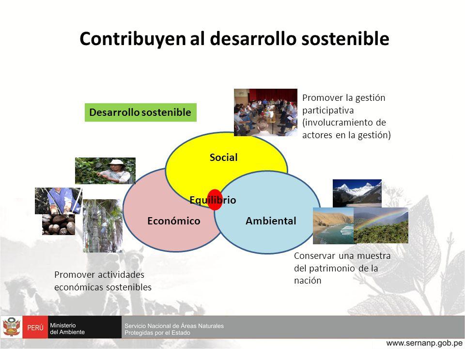 Contribuyen al desarrollo sostenible Económico Social Ambiental Promover la gestión participativa (involucramiento de actores en la gestión) Promover