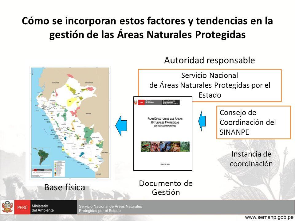 Servicio Nacional de Áreas Naturales Protegidas por el Estado Consejo de Coordinación del SINANPE Base física Documento de Gestión Instancia de coordi