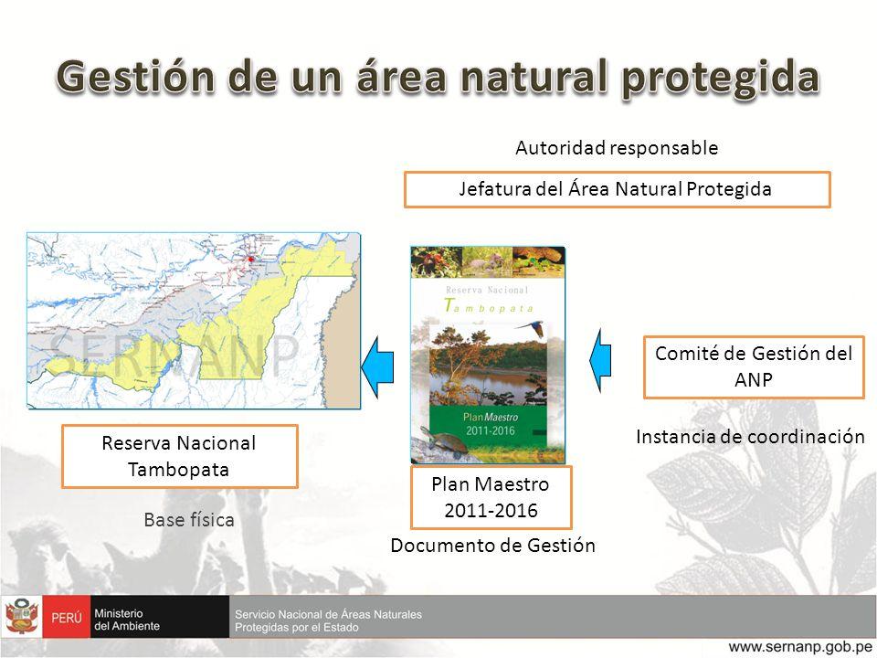 Jefatura del Área Natural Protegida Comité de Gestión del ANP Documento de Gestión Instancia de coordinación Autoridad responsable Reserva Nacional Ta