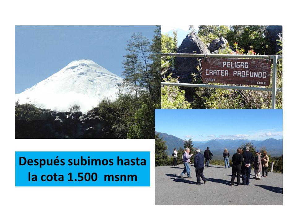 Después subimos hasta la cota 1.500 msnm