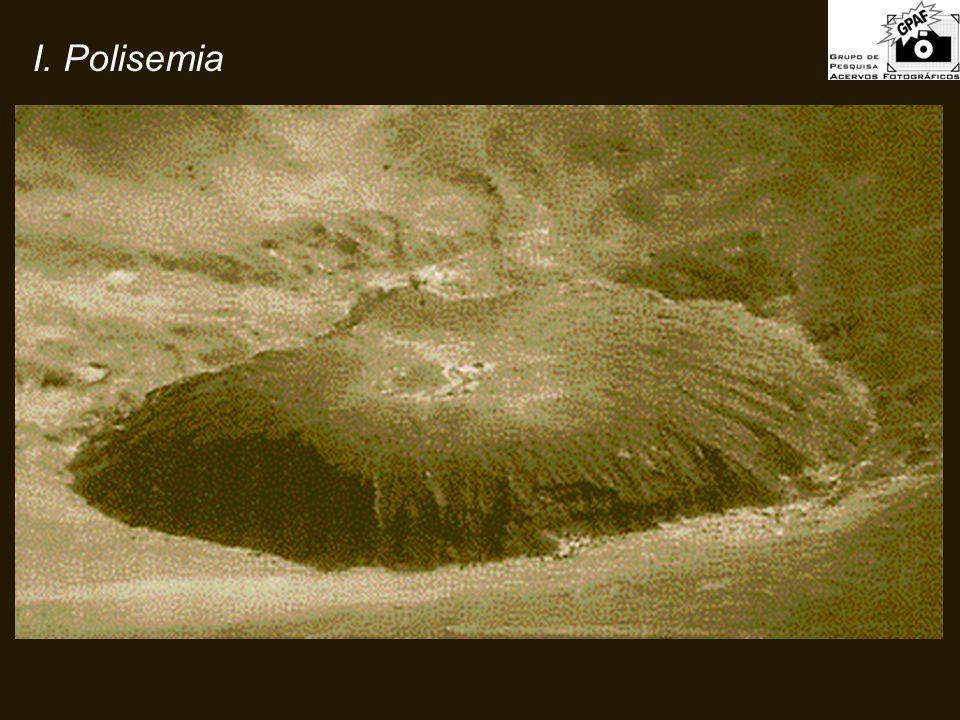I. Polisemia