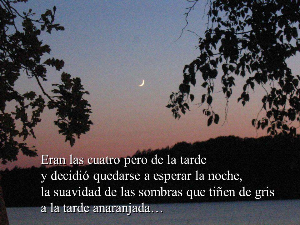 … la luna llegará por pura curiosidad a mirar el Beso Celeste… … la luna llegará por pura curiosidad a mirar el Beso Celeste…