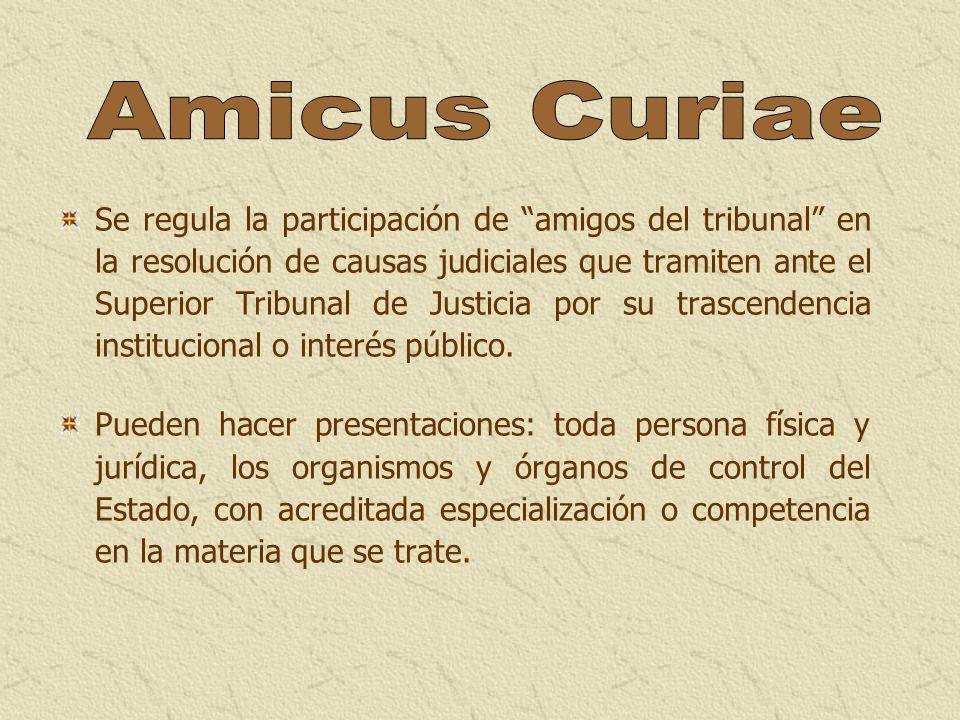 Se regula la participación de amigos del tribunal en la resolución de causas judiciales que tramiten ante el Superior Tribunal de Justicia por su tras