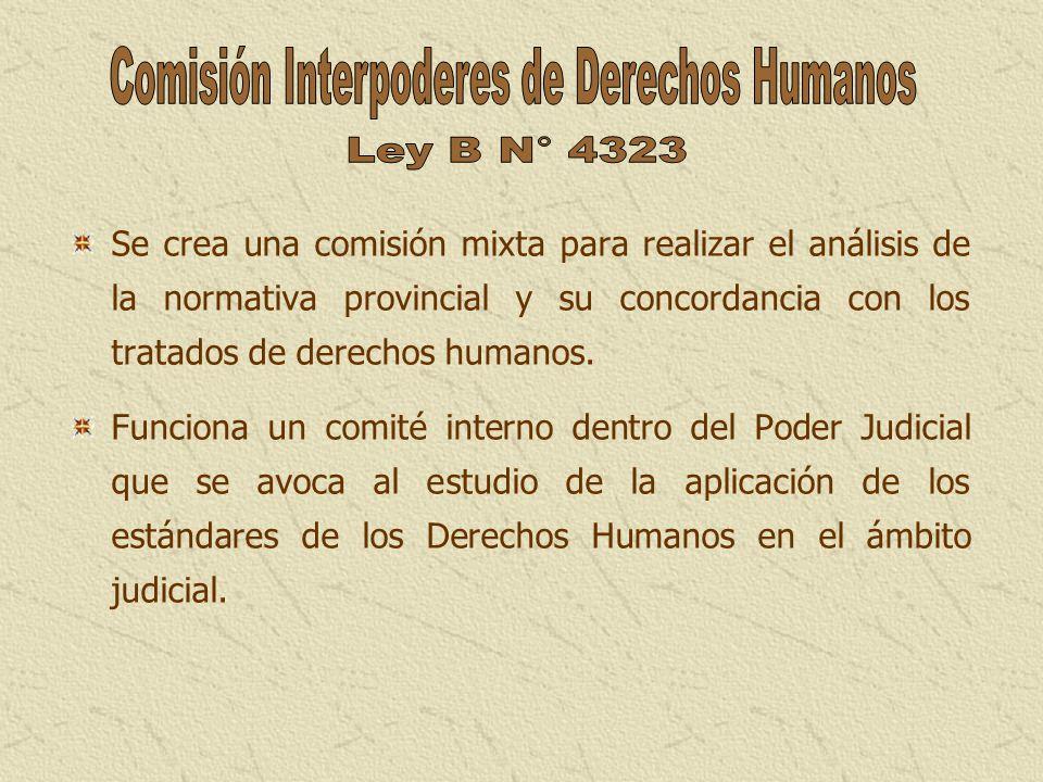 Se crea una comisión mixta para realizar el análisis de la normativa provincial y su concordancia con los tratados de derechos humanos. Funciona un co