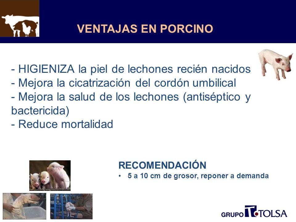 VENTAJAS EN PORCINO - HIGIENIZA la piel de lechones recién nacidos - Mejora la cicatrización del cordón umbilical - Mejora la salud de los lechones (antiséptico y bactericida) - Reduce mortalidad RECOMENDACIÓN 5 a 10 cm de grosor, reponer a demanda