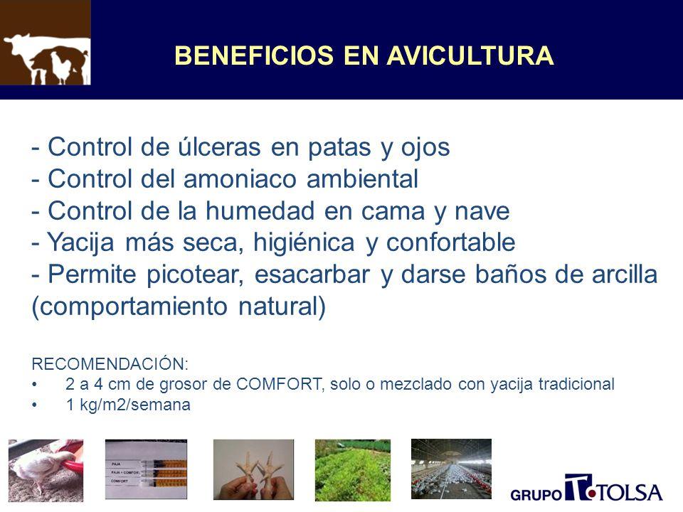BENEFICIOS EN AVICULTURA - Control de úlceras en patas y ojos - Control del amoniaco ambiental - Control de la humedad en cama y nave - Yacija más sec