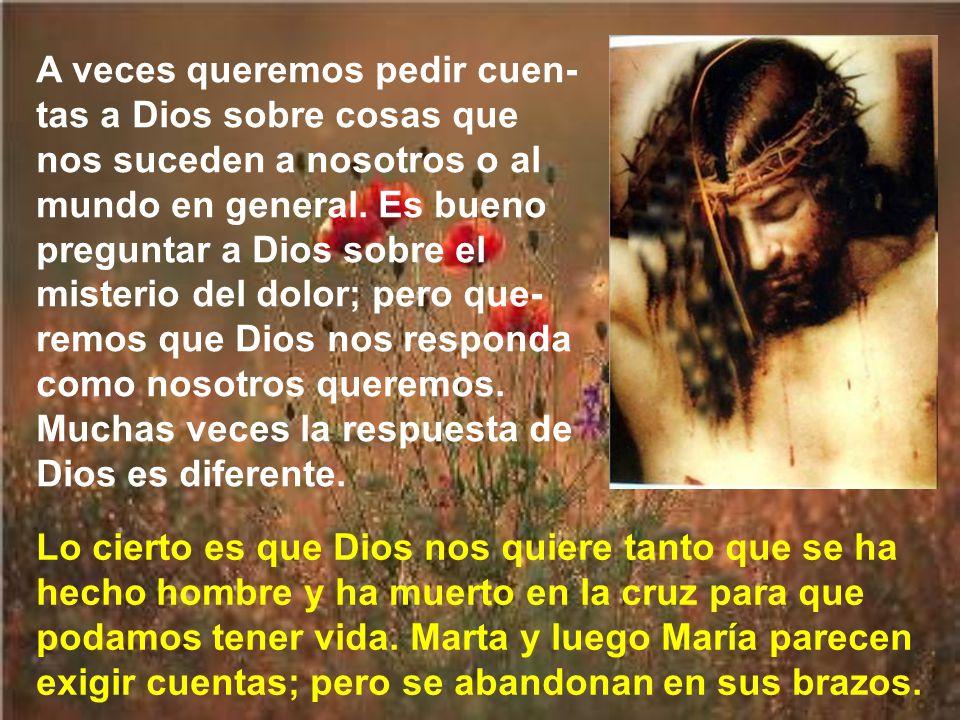 Cuando Marta se enteró que llegaba Jesús, salió a su encuentro. Y le dijo lo que durante aquellos días habría pensado cientos de veces: Si hubieras es