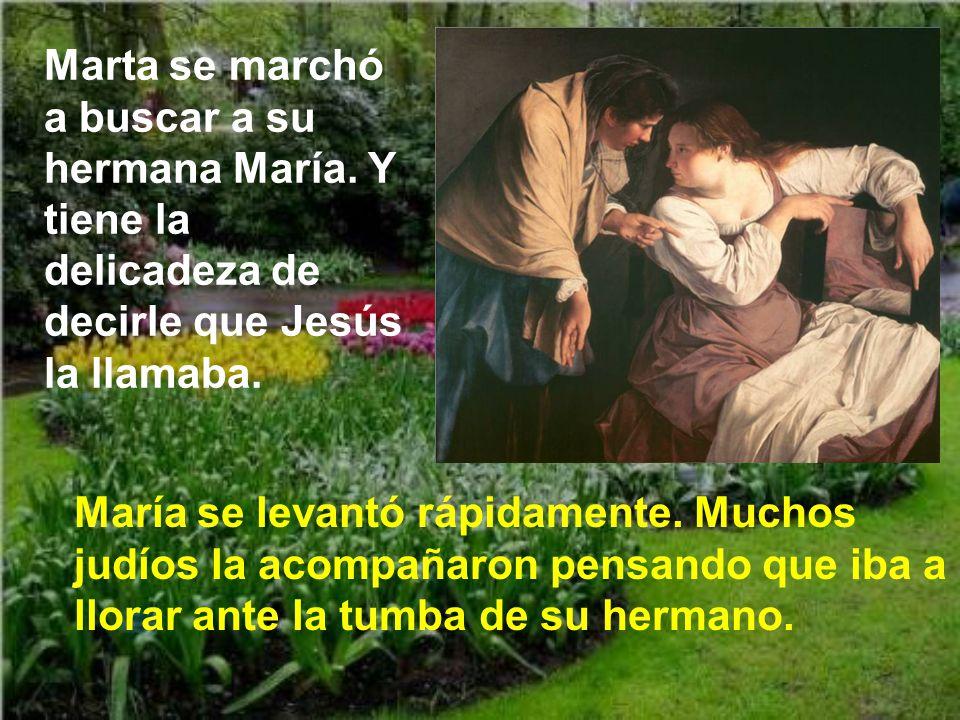Y continúa el diálogo preguntando Jesús a Marta: ¿Crees esto? Y Marta hace un acto grandioso de fe: Sí, Señor, yo creo que tú eres el Cristo, el Hijo